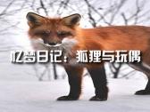 狐狸与玩偶